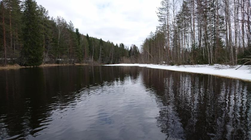 Suonenjoki